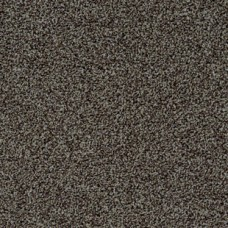 Ковровая плитка TORSO 2914