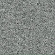 Ковровое покрытие Accor 1007
