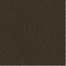 Ковровое покрытие Allure mocca 1008